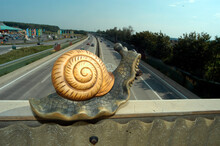 Snail Pace On The Highway