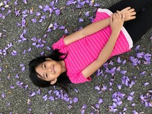 Portrait Of Girl Lying Amidst Petals On Road