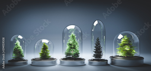 Fototapeta Collection of Christmas trees in glass jars obraz