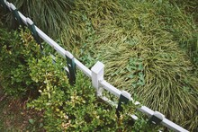 High Angle View Of Fence Amidst Plants