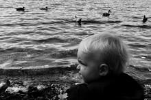 Rear View Of Boy Looking Away At Lakeshore