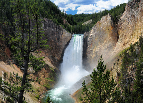 Cuadros en Lienzo View To The Lower Yellowstone Falls From Red Rock Point On A Sunny Summer Day Wi