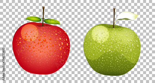 Fototapeta Green and red apples realistic isolated obraz