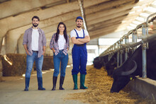 Group Of Happy Young Cattle Farm Workers Standing In A Livestock Barn And Smiling