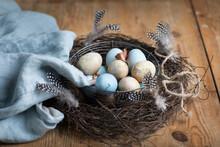 Easter Eggs In Twig Nest, Sweden