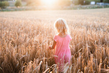 Girl On Wheat Field, Denmark