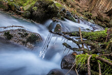 Water Stream With Icicles In Forest, Little Fatra, Slovakia