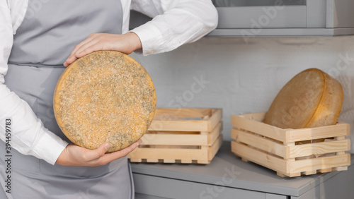 Fototapeta Banner farmer in gray apron holds homemade round of cheese in wooden box obraz
