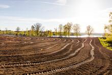 View Of Plowed Field, Sweden