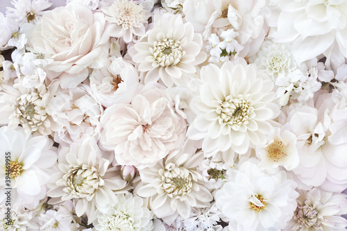 Photo Delicate blossoming white flowers, blooming roses and dahlias festive background