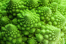 Macro Image Of Fresh Romanesco Cauliflower