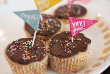 Delicious Cupcakes Celebration Graduation From School