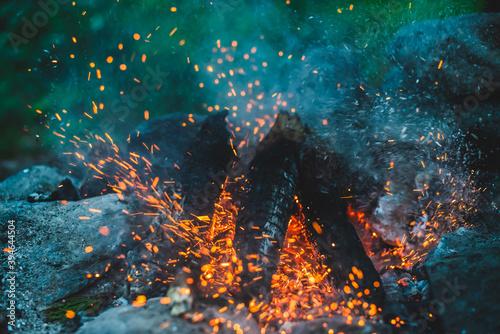 Fotografie, Obraz Vivid smoldered firewoods burned in fire close-up