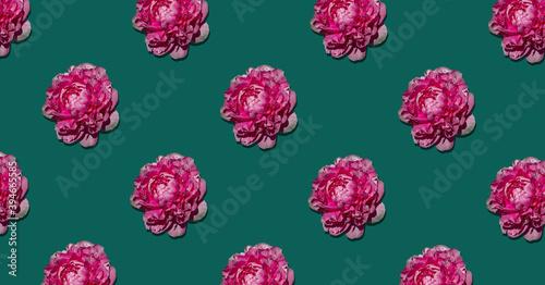 Cover patern peony trendy colors on a green background. Billede på lærred