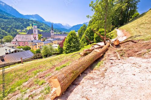 Papel de parede Town of Berchtesgaden hillside path, chopped tree in Alpine landscape