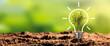 Leinwandbild Motiv Ecological friendly and sustainable environment