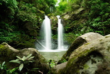 Jungle Double Waterfall Cascad...