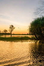 Sunset On A Wetland In The Northern Territory