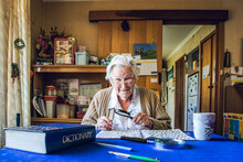 Old Lady At Dining Table With Crossword, Magnifying Glass, Dictionary And Cup Of Tea