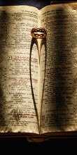 Old Family Bible, Wedding Ring...