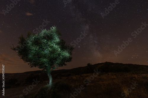 Fototapeta Night photography with a view of the stars, milky way and illuminated tree