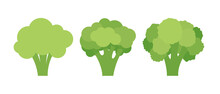 Set Of Three Broccoli Isolated On White Background. Vector Illustration