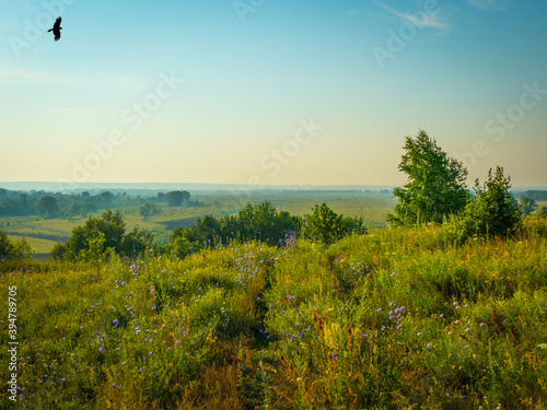 Photo A grassy road on a hilltop under a clear blue summer sky