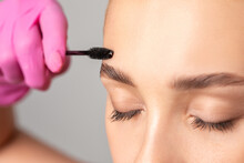 Makeup Artist Combs Eyebrows With A Brush After Dyeing In A Beauty Salon.Professional Makeup And Cosmetology Skin Care.