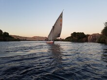 Traditional Felucca Sailing On Nile