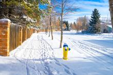 Edmonton City Street  Sidewalk After Snowfall