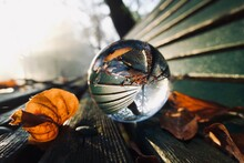 Close-up Of Autumn Leaves And Crystal Ball On Wooden Bench