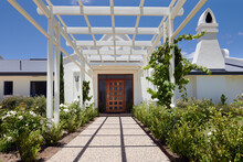 White Pergola And White Roses Leading To Front Entrance Of Cape Dutch Style Homestead At Winery