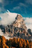 Pale di San Martino  - 394924953