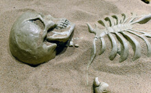 High Angle View Of Human Skeleton In Sand