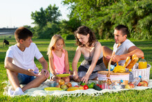 Cheerful Family Of Four Picnic...