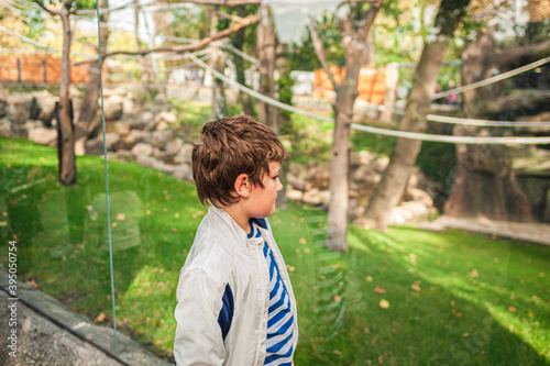 Fotografía a young boy in a jacket looks at the life of animals in aviary through glass in