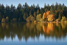 Lost Lagoon Autumn Stanley Par...