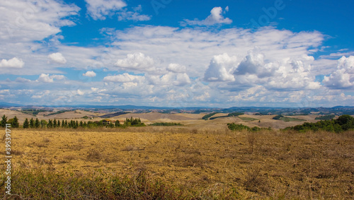 Fototapeta premium The brown late summer landscape around the historic village of Murlo, Siena Province, Tuscany, Italy