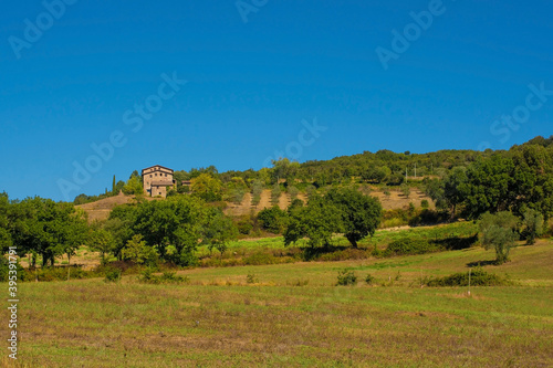 Fototapeta premium The green landscape around the historic village of Murlo, Siena Province, Tuscany, Italy