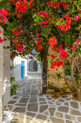 Fototapety, obrazy: Traditional alley with whitewashed houses and a full blooming bougainvillea in Prodromos Paros island