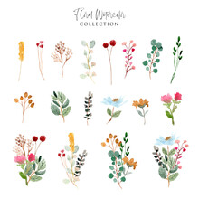 Beautiful Floral Garden Watercolor Collection