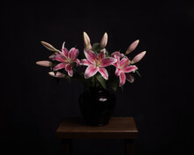 Still Life With Pink Lily Flow...