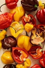 A Colourful Mix Of The Hottest Chilli Peppers In The Market