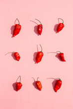 Nine Fresh Red Chilli Peppers On A Pink Surface