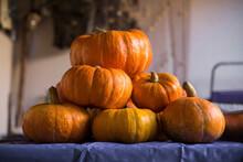 Collection Of Big And Small Shiny Orange Pumpkins