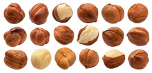 Hazelnuts Isolated On White Background, Nuts Collection