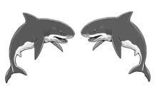 Giant Sharks. Big Shark Drawing. Monster Megalodon Illustration.