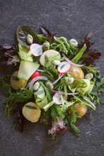 Summer Garden Salad With Ew Potatoes, Radish, Broad Beans, Courgette And Red Onion