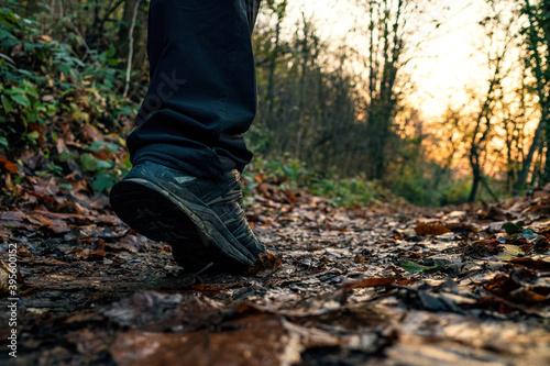 Fotografie, Tablou Autunno, passeggiata, running, outdoor, corsa, scarpa