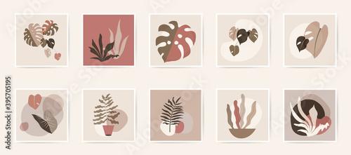 Stampa su Tela Abstract natural botanical wall art posters